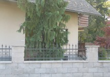 Jeklena vrtna ograja, kovana